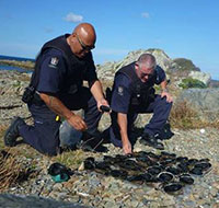 Honorary fishery officers inspecting paua
