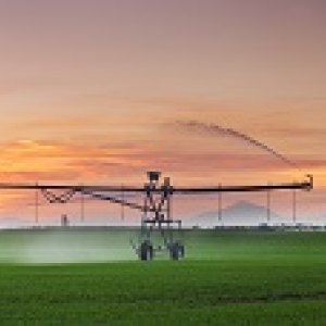 120x114-centre-pivot-irrigation-sunset-nz.jpg