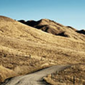 dirt road through hills of dry grass