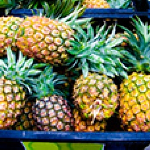 pineapples in a crate