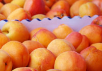 apricots in a box