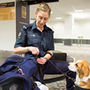 detector dog and handler at airport