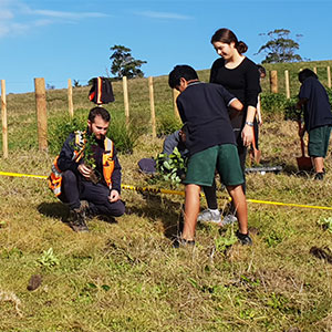 final planting trees on your land nz