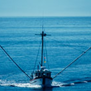 fishing boat sustainable 200 140