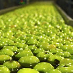 green apples floating in water