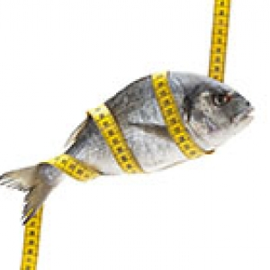 fish with measuring tape wrapped round